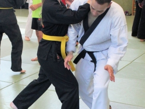Hapkido-Lehrgang in Auerbach